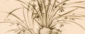 Elegant Orchid , Nakabayashi Chikuto (1776–1853)