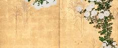 Chrysanthemums, Ogata Korin (1658–1716)